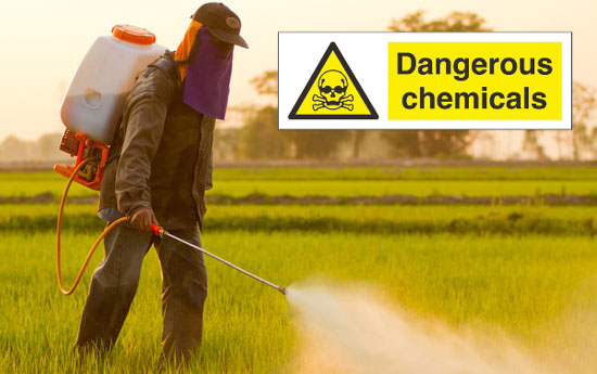 pesticides chemicals