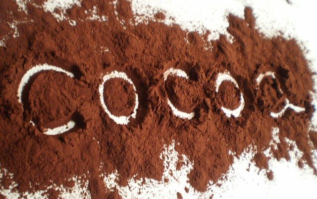 Study: Cocoa Flavanols Reverse Memory Loss 'by 20-30 Years'
