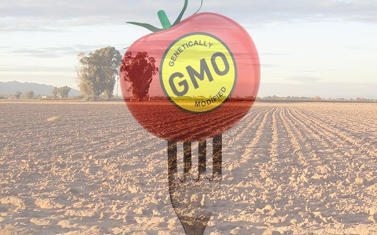 GMO Crops Are Destroying Farmland, and Monsanto Doesn't Want You to Know