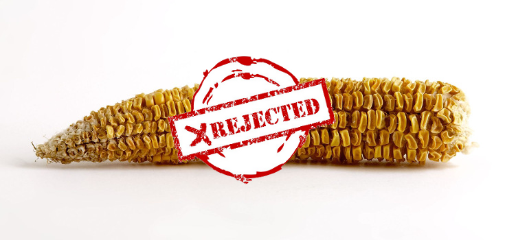 Biotech Outraged After China Rejects Several Billion Tons of GMO Corn