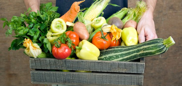 Growing Your Own Food Part of Our Future, Expert Says