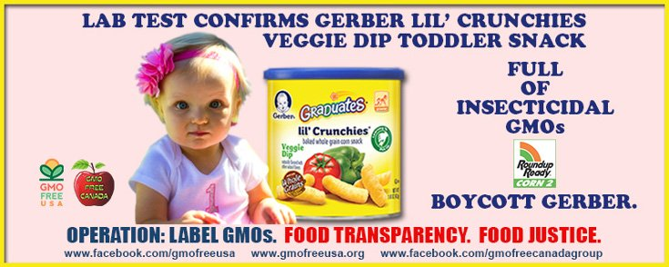 Report Finds Gerber Baby Food Filled with GMOs