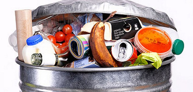 10 Ways to Stop the Food Waste