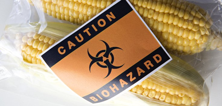 Victory! Federal Judge Rules to Uphold GMO Ban in Oregon
