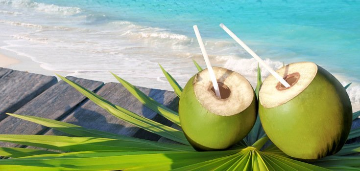 Cactus Water Versus Coconut Water: What You Need to Know