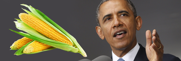 Tell Obama: Don't Make GMO Labeling Illegal Under The DARK Act!