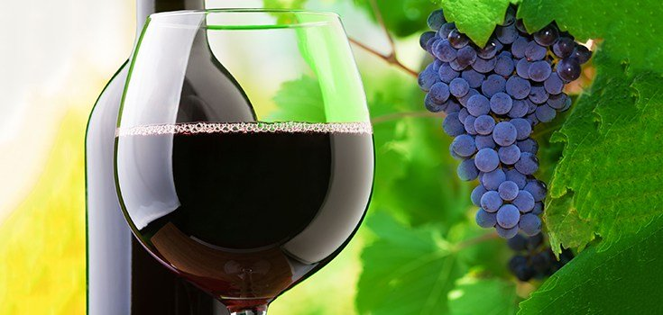 Why Resveratrol Makes Red Wine the Exception to the Rule