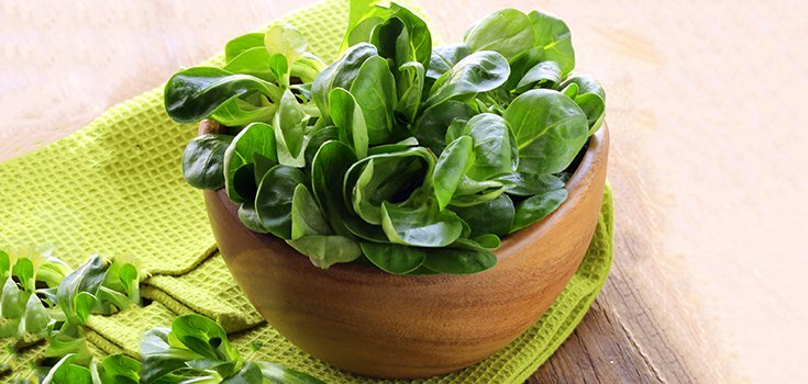 Stay Healthy: Boost Magnesium Levels with These Two Foods