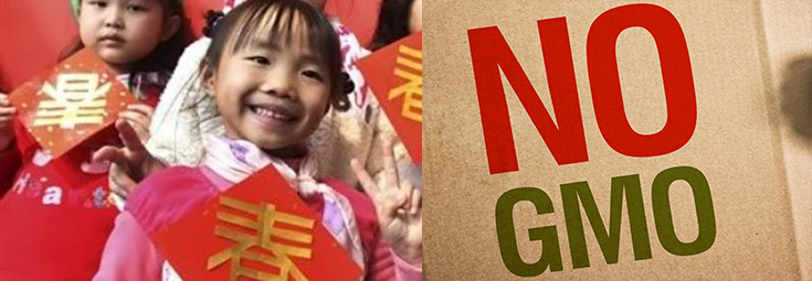 Taiwan Bans GMOs in School Meals Due to Health Risks