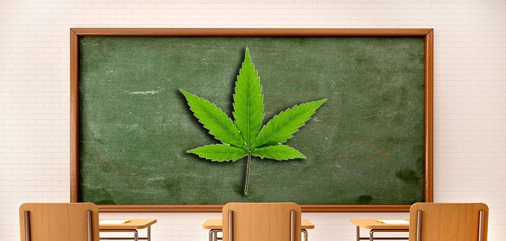 Popular Vermont College Course on Medical Marijuana Faces Challenges