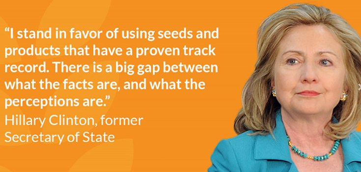 Hillary Clinton's Support for GMOs Once Again Confirmed