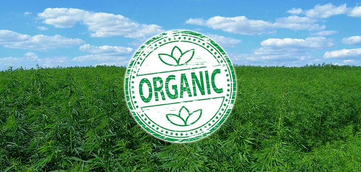 USDA Gives Colorado Cannabis Farm First Approval to Use Organic Seal