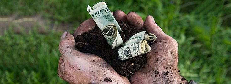 Farmers Can Receive Grants to Move to Organic Farming