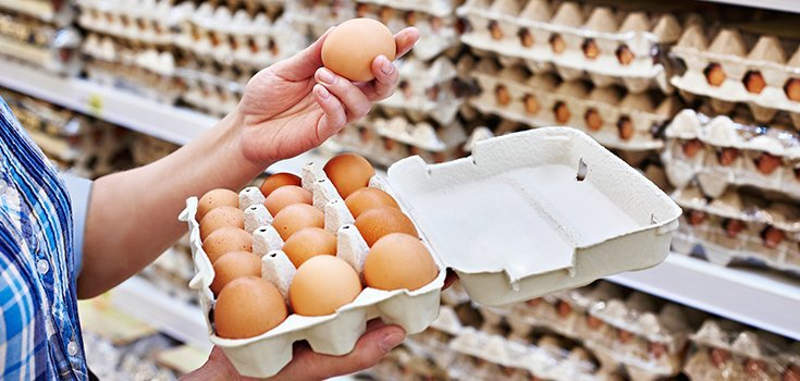 Investigation Brews over Insecticide-Tainted Eggs Distributed Throughout U.K.