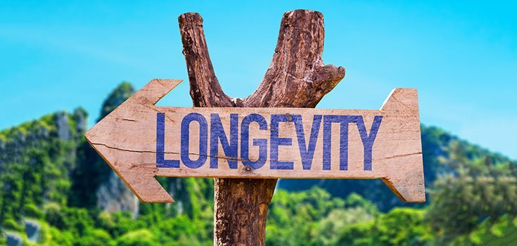 Cultures Around the World Show Us How Life Purpose Fuels Longevity