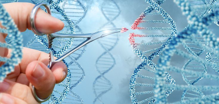 Scientists Edit Gene Inside Living Human Body for the First Time