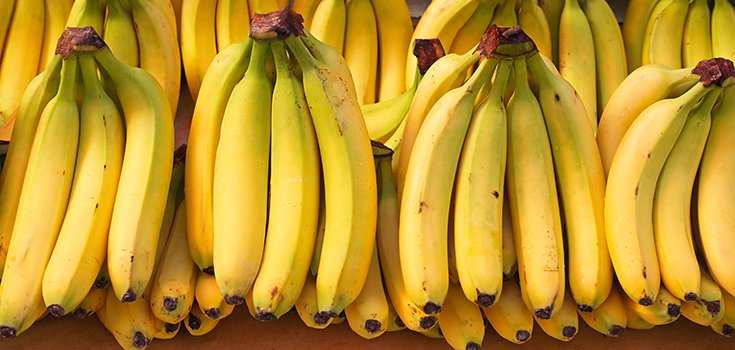 Bananas are Facing Extinction Because of a Soil Fungal Infection