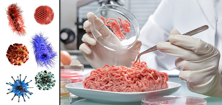 Study: Most Supermarket Meats Contain Antibiotic-Resistant Superbugs