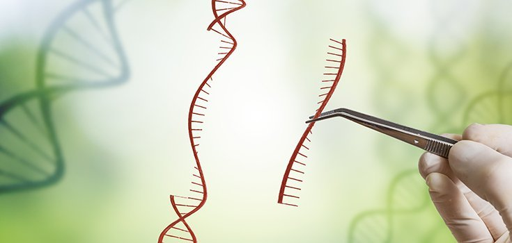 CRISPR Gene-Editing Tool Linked to Increased Cancer Risk in Studies