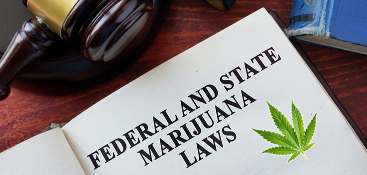 The Federal Government Wants Public Input on Rescheduling Marijuana