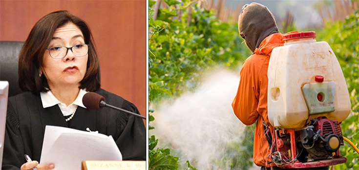 Judge Upholds Monsanto Roundup-Cancer Verdict but Cuts Award to $78.5 Million