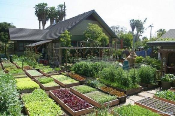 Dervaes family farm
