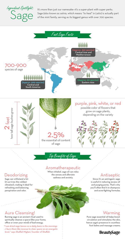 sage infographic