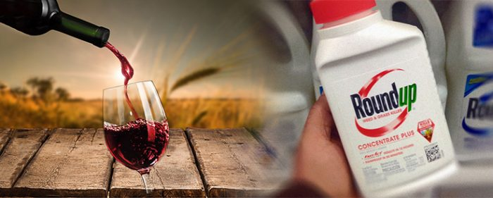 wine Roundup