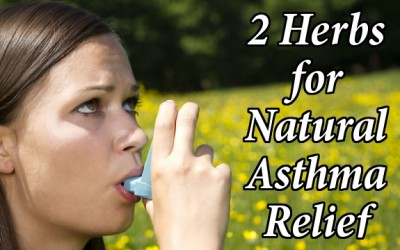 Asthma herbs
