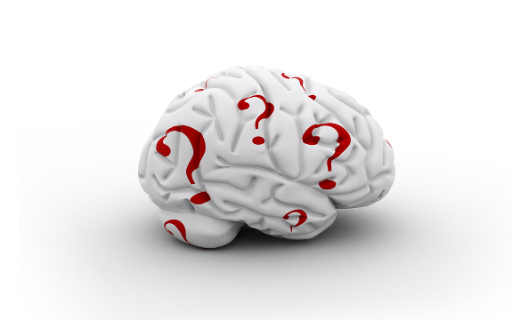 brain question marks