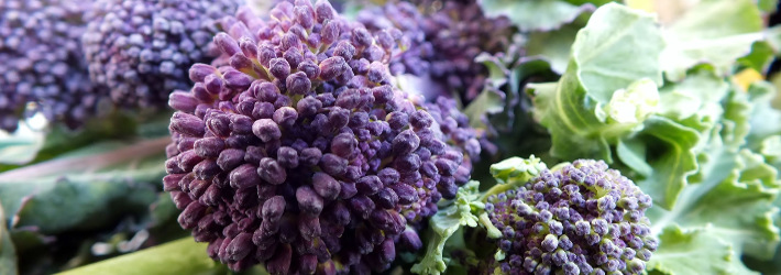 broccoli_purple_veggie_710_250