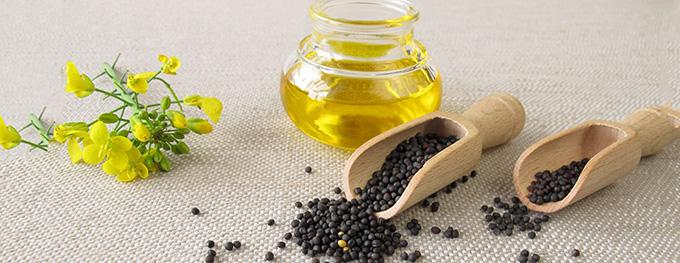 canola-rapeseed-oil-680