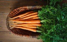 carrots in basket