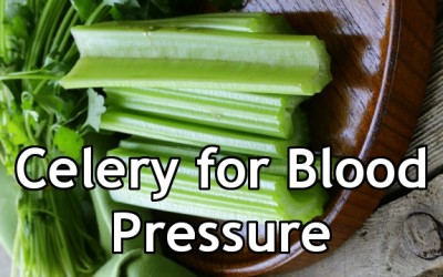 Celery seed and blood pressure