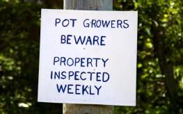 pot grower