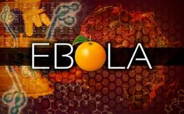 Ebola vitamin C