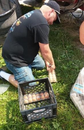 farmer_eggs_detroit_crop
