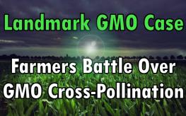 GMO case
