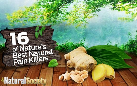 Natures Body Pain Killer