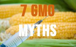 gmo-myths