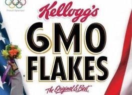 GMO Kellogg's