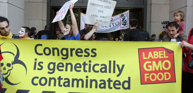 gmo_monsanto_congress_crop