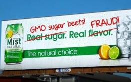 gmo_soda_sugar_crop
