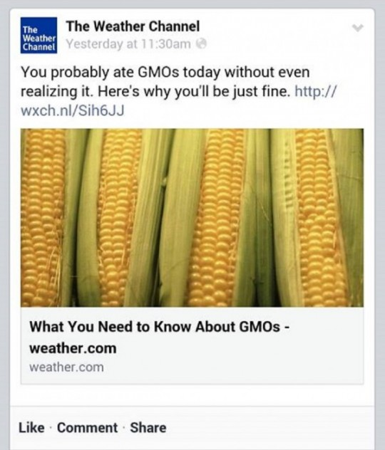 gmo_weather_channel
