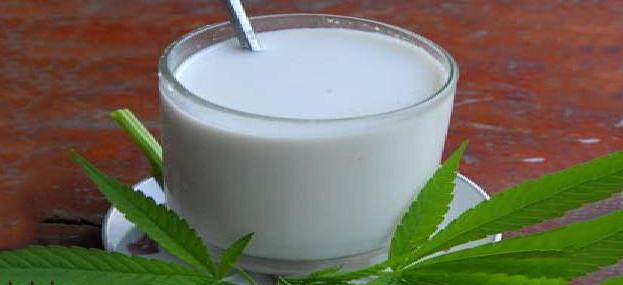 hemp-milk 630