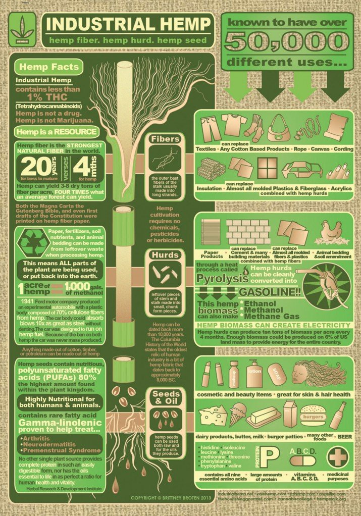 hemp-production-usa