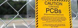 Washington State Sues Monsanto over PCB Pollution
