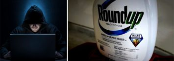Monsanto Emails Raise More Questions About Collusion and Roundup Safety
