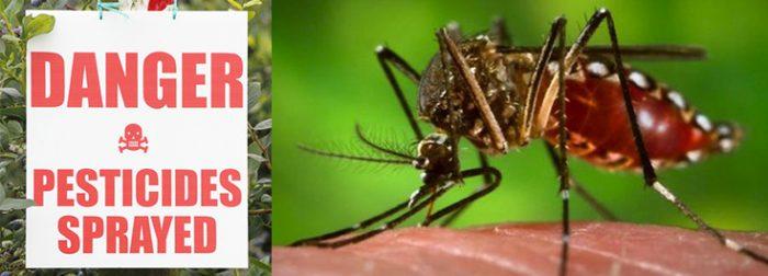 pesticides for Zika mosquiotes