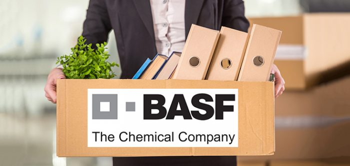 basf job loss